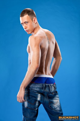 http://pagepakomx.blogspot.com/2013/08/modelo-brandon-jones-ii.html