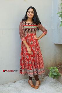 Telugu Actress Nikhila Vimal Latest Stills in Anarkali Dress  0194.JPG