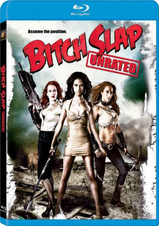 Bitch Slap 2009 UNRATED 350MB Hindi Dual Audio 480p