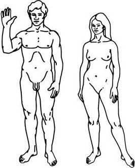 Dibujo de cuerpo humano para colorear (personas adultas)