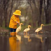 Taoisme 81 - Laot tzu  Tao 10 Membujuk Pikiranmu Agar Tidak Mengembara