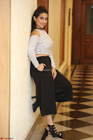 Manjusha in sleevelss crop top and black skirt at Darshakudu pre release ~  Exclusive Celebrities Galleries 035.JPG