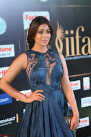 Shriya Saran in Beautiful Transparent Dark Gown IIFA Utsavam Awards 2017 011.JPG