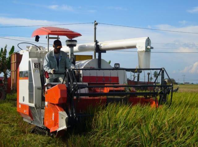 Hidroponik Sebagai Teknologi Tepat Guna Pertanian
