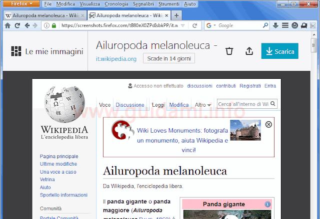 Firefox sezione Le mie immagini di Cattura screenshot