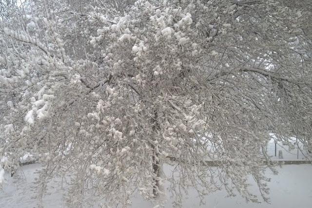 neve e bambini