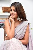 Nidhi Agarwal at Ismart Successmeet-thumbnail-7