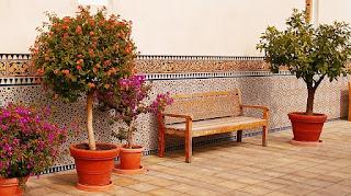 花に挟まれたベンチ