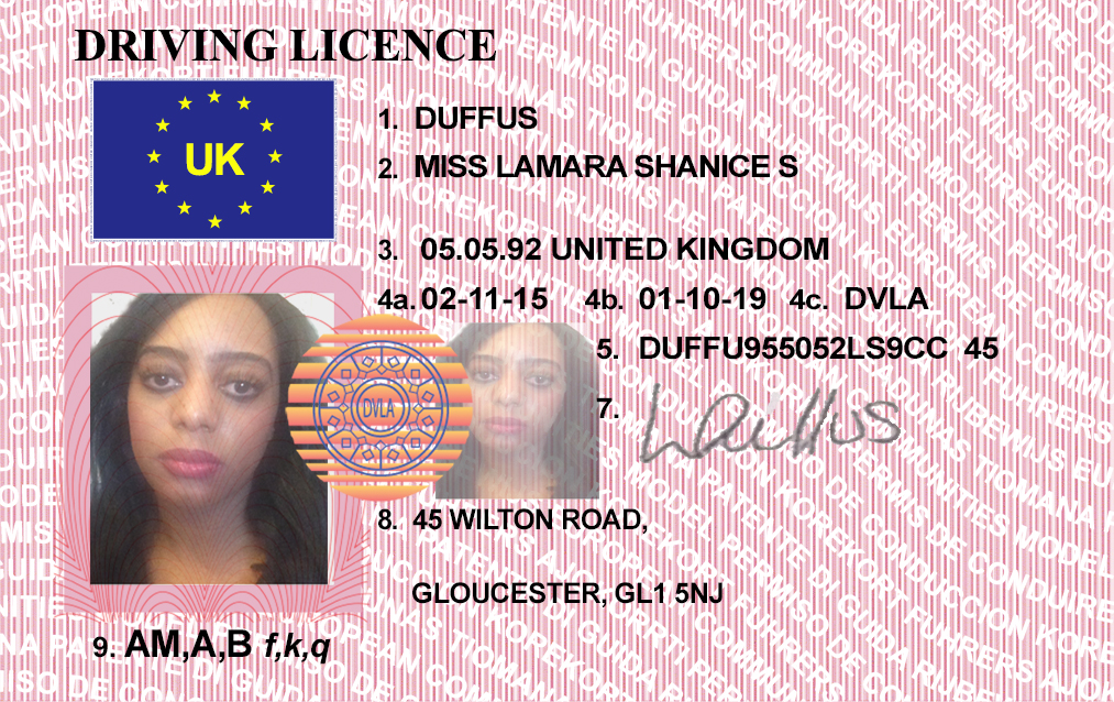 fake driving licence template - i will edit or make any type of scanned images driver