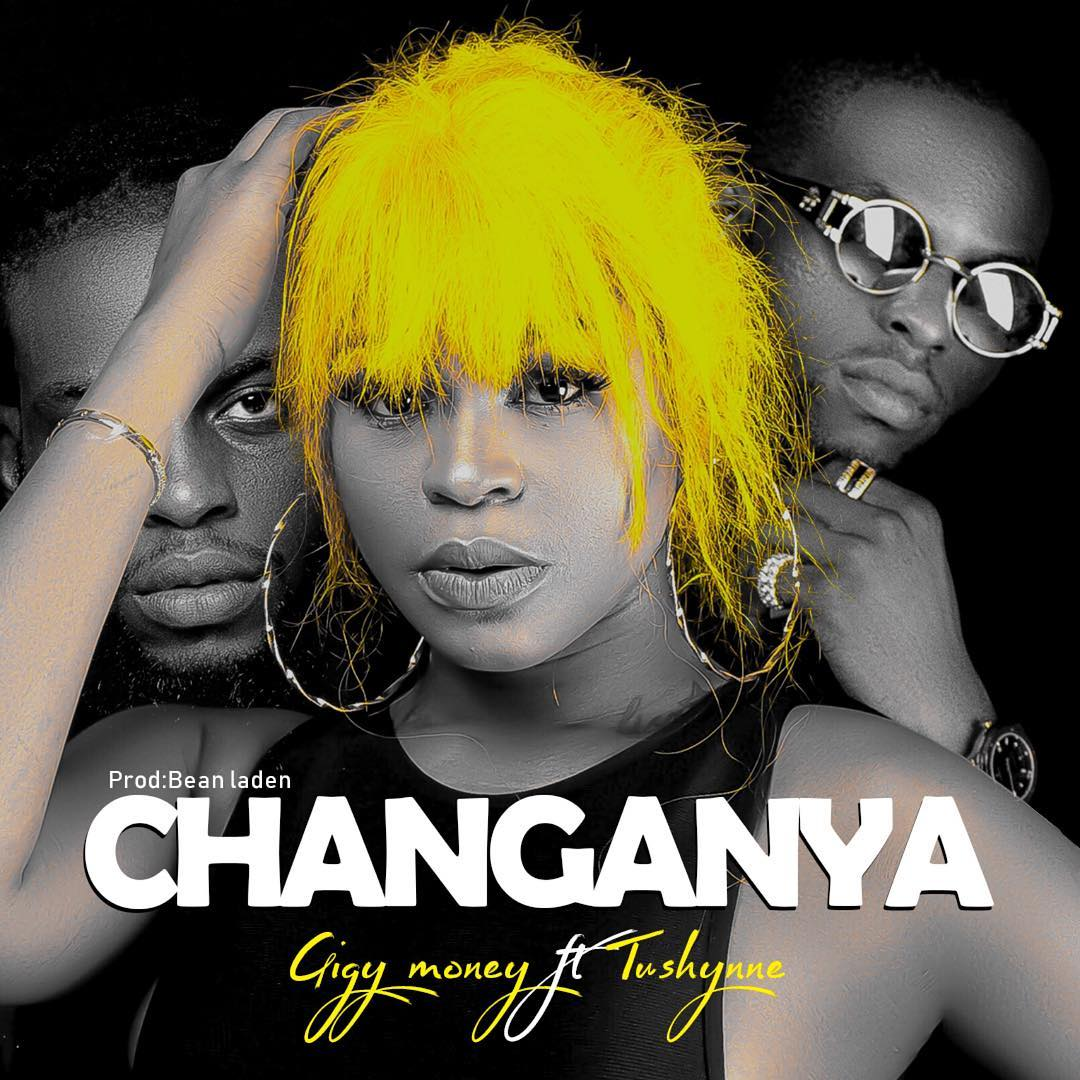 Gigy Money Ft Tushynne – Changanya
