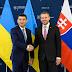 """Украина и Словакия договорились о сотрудничестве """"в небе"""""""