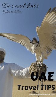 Dubai rules for tourists animals