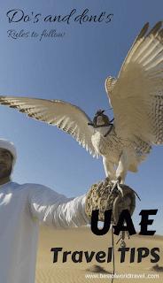 Dubai rules for tourists animals