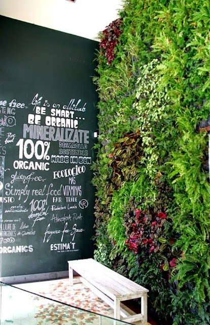 Benefits And Advantages of Vertical Gardens 6