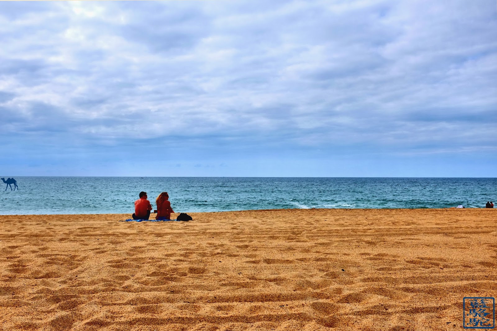 Le Chameau Bleu - La Plage de la Madrague - Anglet - Tourisme