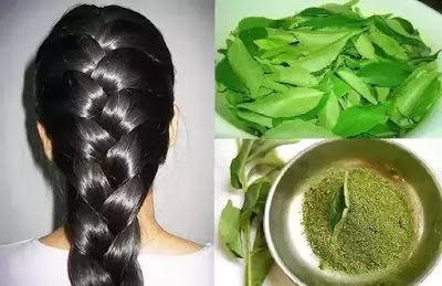 Curry leaves prevent from hair fall