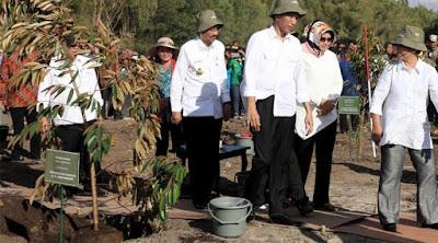 Program 1 Miliar Pohon, Jokowi Minta Danau Toba Dijaga
