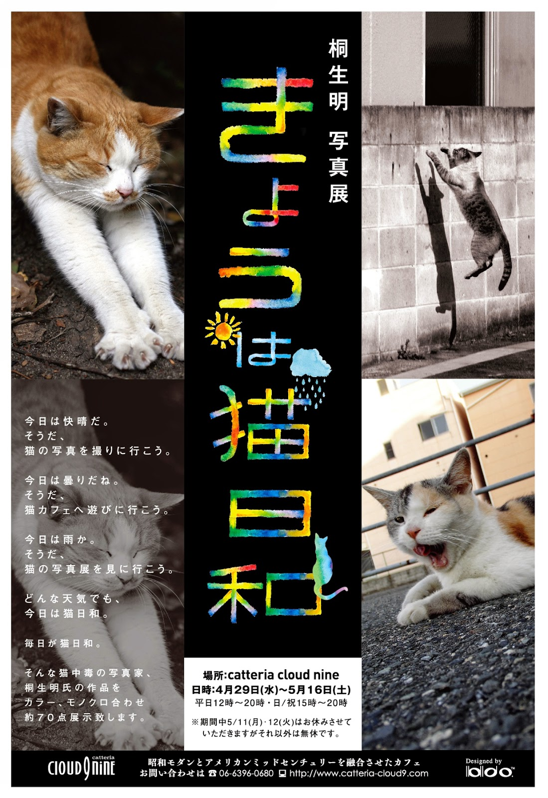 http://kiryu-catstory.blogspot.jp/2015/03/blog-post_18.html