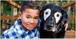 Η ιστορία του αγοριού & του σκύλου που έχουν και οι δύο Λεύκη -Συγκίνησαν το Ιντερνετ