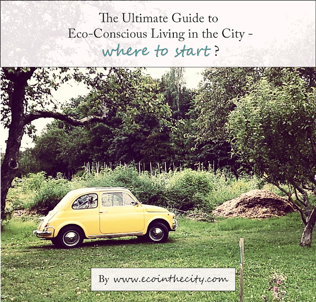 The ultimate guide to eco-conscious living
