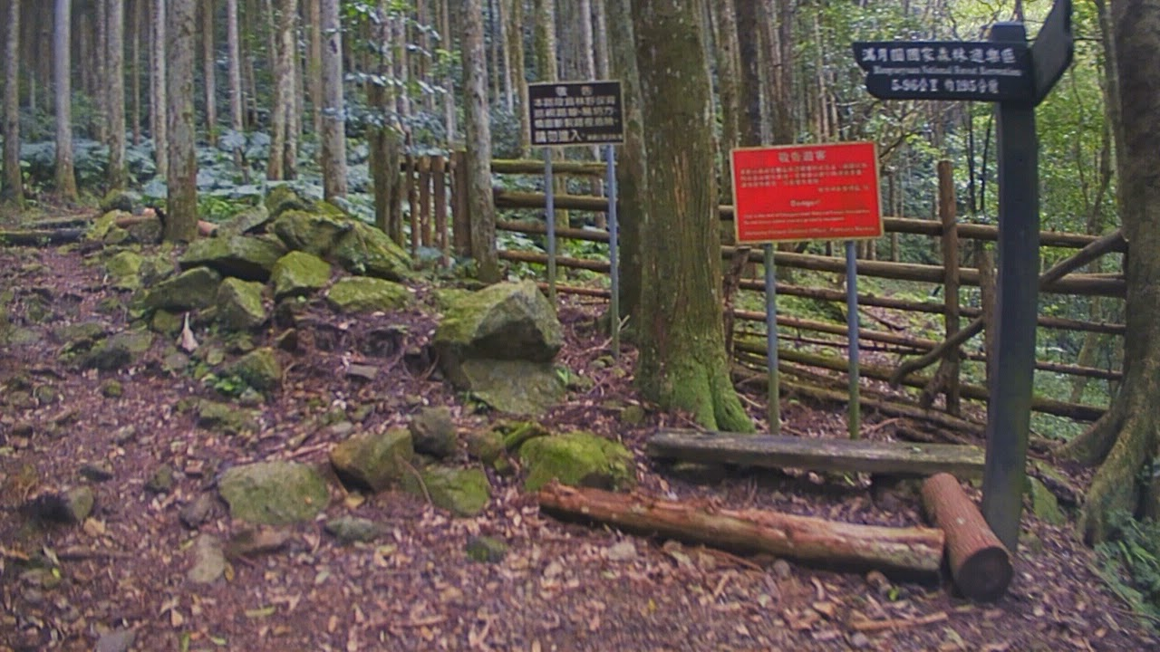 東滿步道越野路線縮時攝影(Brinno TLC200 Pro Hiking brinno Time Lapse)