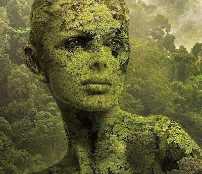 arte digital rostro de mujer bosque