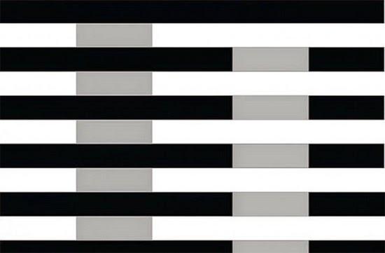 Ilusão de ótica - Tons de Cinza