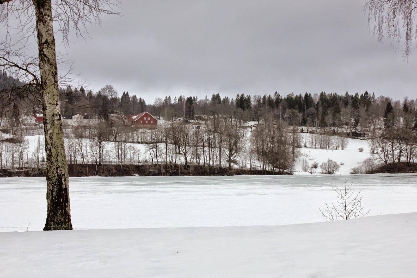 Nesoya wyspa zima