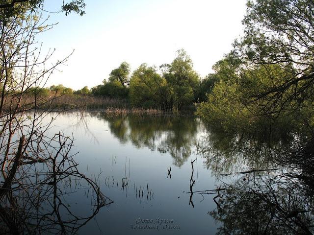 Озеро Чицкое