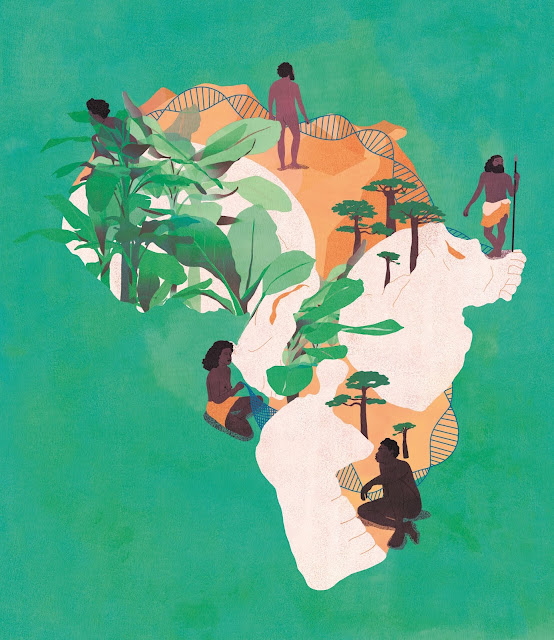 Our fractured African roots