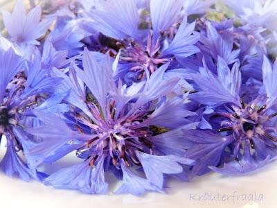 Detailaufnahme der gesammelten Kornblumen