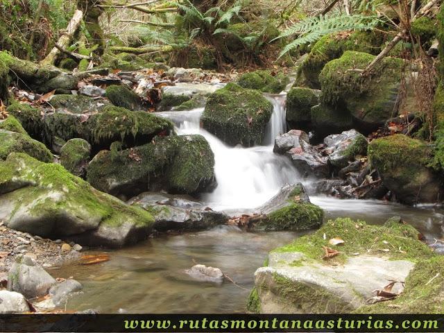 Río y piedras
