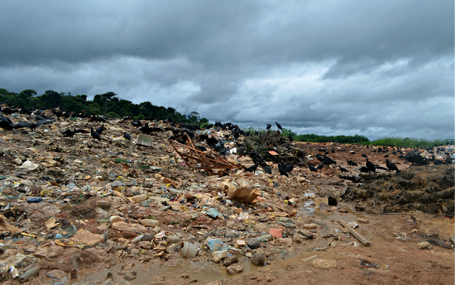 Lixão Cruzeiro do Sul recebe 60 toneladas de lixo por dia (Foto: Anny Barbosa/G1)