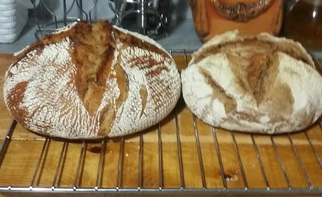 20160103 215449 1 - Baştan Sona;''Bir Ekmek Yapmak'' (Bu Kez Çavdar Unu Kullanarak)