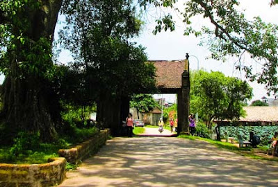 Duong Lam Village, Iconic symbol of Vietnam traditional countryside 1