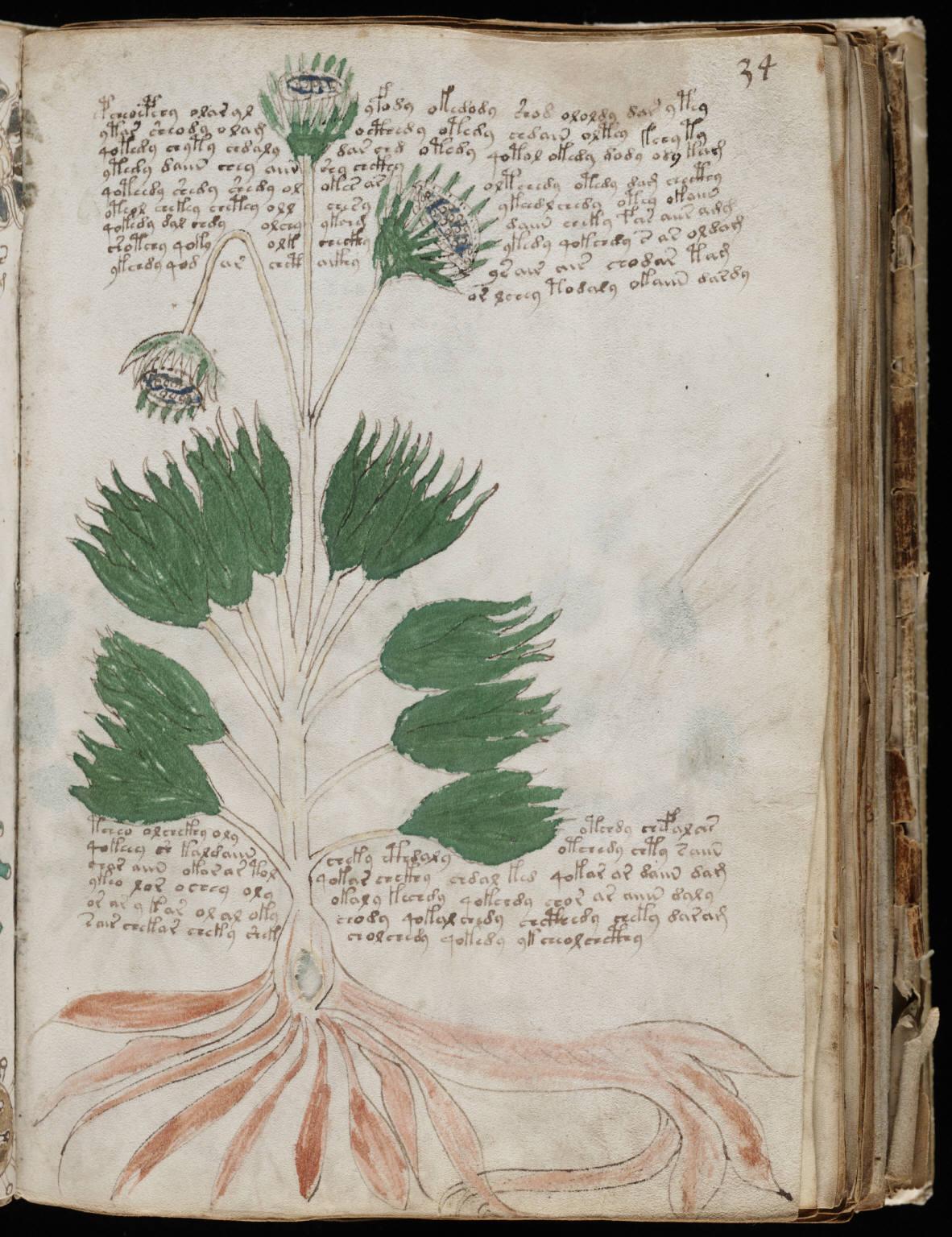 manuscrito065
