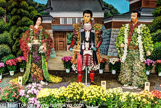 life-size figures which wear clothes made of colorful chrysanthemums. potted chrysanthemums in front of figures.
