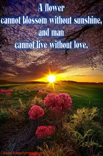 life cannot be without love, love images and quotes