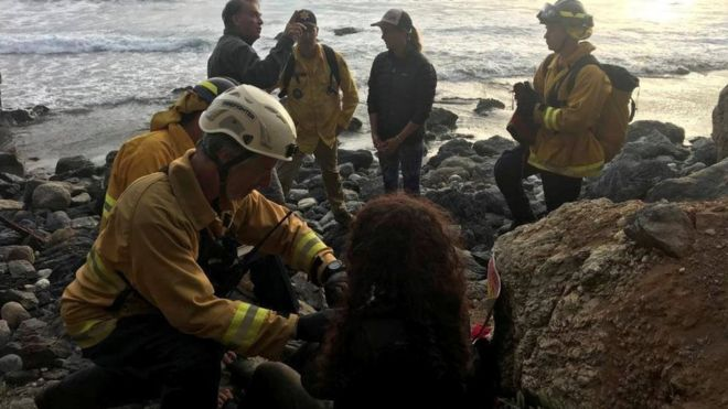 Американка, що впала з автомобілем зі скелі, знайшли живою через тиждень