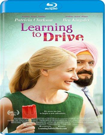 Learning to Drive (2014) Dual Audio Hindi 480p BluRay 300MB