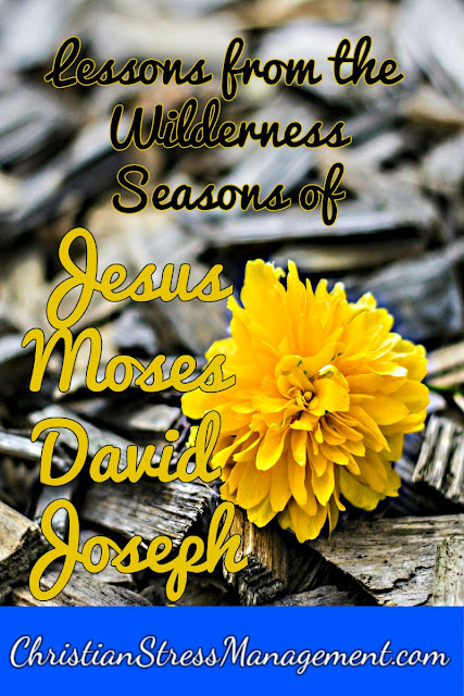 Lessons from the Wilderness Seasons of Jesus, Moses, David and Joseph