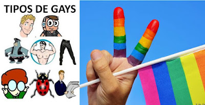 Tipos de gays