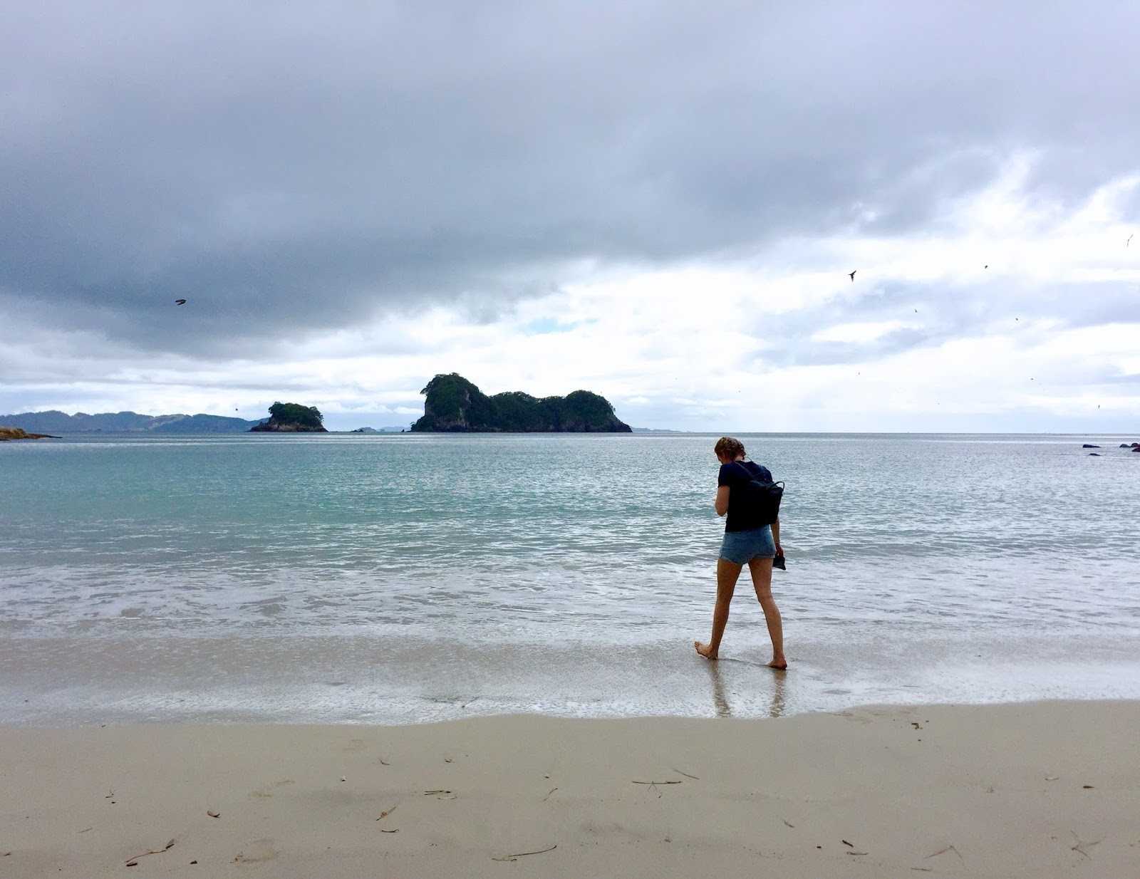 New Zealand's best hikes | Cathedral Cove Walk