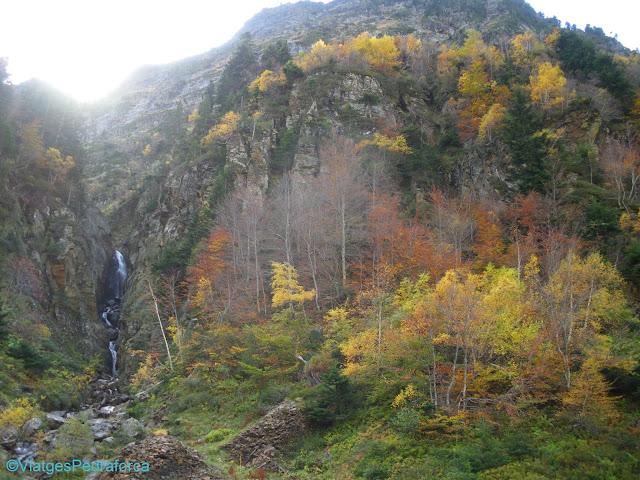 Val d'Aran, Pirineu de Lleida, fagedes, colors de tardor, Catalunya, senderisme