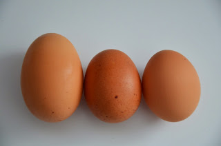Various sized, colour and sized eggs
