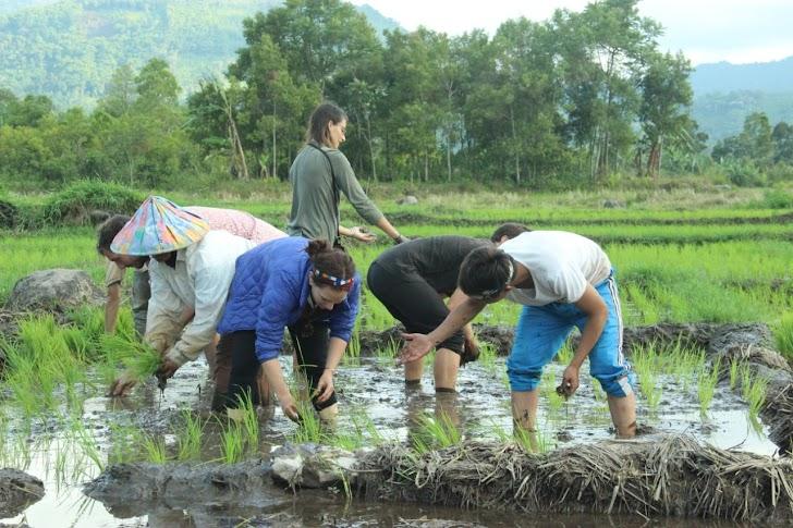 Gaet Wisman, Agro Culture dan Jelajah Alam Jadi Andalan Wisata Desa Lempur