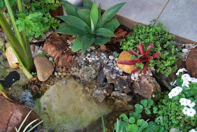 Pequenos jardins para você criar