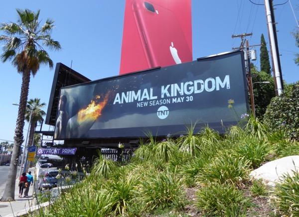Animal Kingdom season 2 billboard