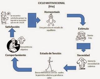 Procesos Administrativos Ciclo Motivacional