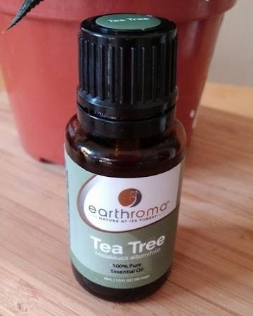 4 Cara Tepat Menggunakan Tea Tree Oil untuk Mengobati Jerawat